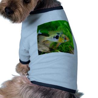 Exotic Fish Doggie T-shirt