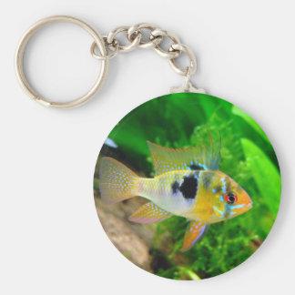 Exotic Fish Key Chain