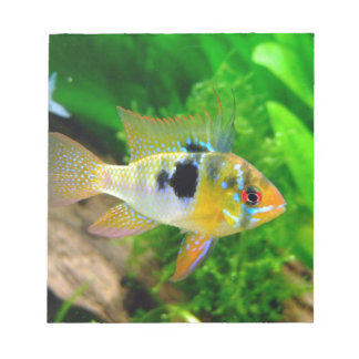 Exotic Fish Notepads