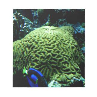 Exotic Fish Notepad