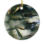 Exotic Fish Pond Colorful Animal Photography Ceramic Ornament