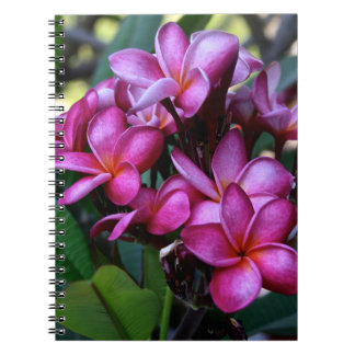 Exotic flower, Notebook