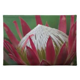 exotic flower cloth place mat