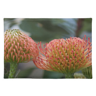 exotic flower place mats