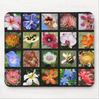 Exotic Flowers from Around the World Mouse Pad