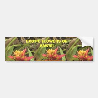 Exotic Flowers of Hawaii, Exotic Flowers of Haw... Car Bumper Sticker