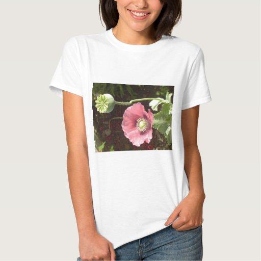 Exotic Flowers Shirts