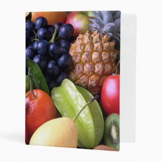exotic fruits mini binder
