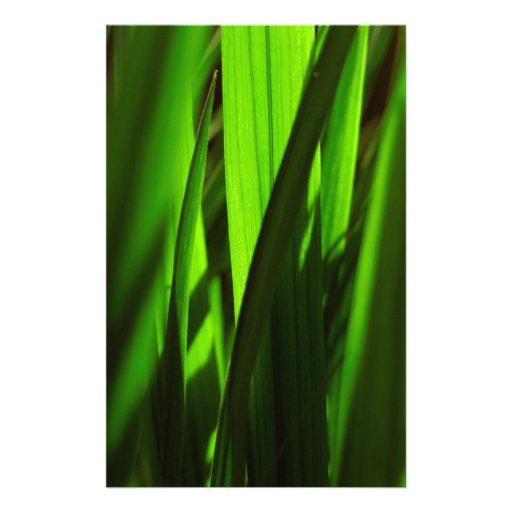 exotic grass - green stationery