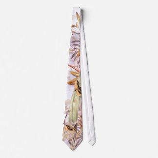Exotic Hummingbirds Tie