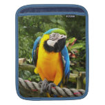 Exotic Macaw Parrot iPad Sleeves