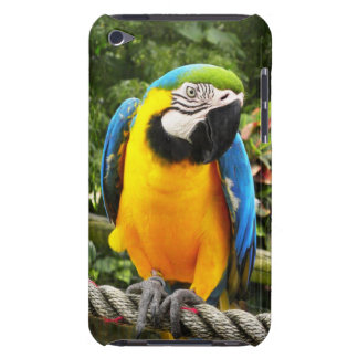 Exotic Macaw Parrot iPod Touch Case