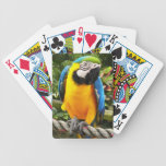 Exotic Macaw Parrot Playing Cards