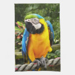 Exotic Macaw Parrot Towel