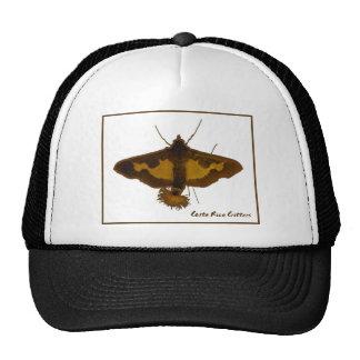 Exotic Moth Trucker Hat