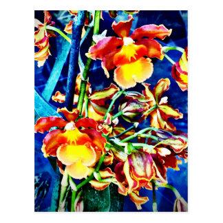 Exotic orange orchids postcard