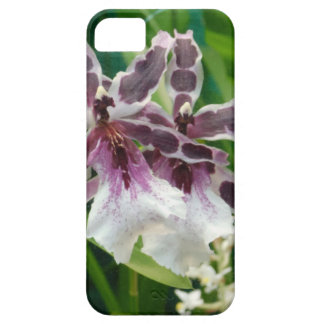Exotic Orchid iPhone 5 Covers