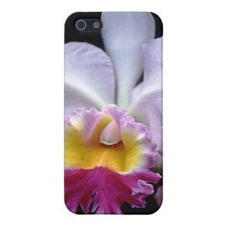 Exotic Orchid case iPhone 5 Cases