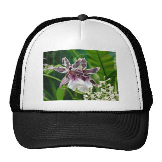 Exotic Orchid Mesh Hat