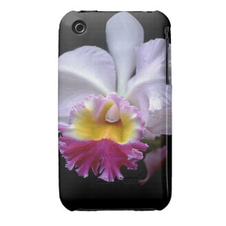 Exotic Orchid iPhone 3 Case-Mate Case