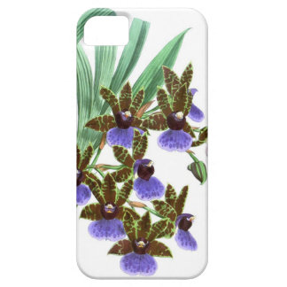 Exotic Orchid Plant Purple Flowers no 3 iPhone 5/5S Cases