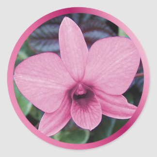 Exotic Orchid Classic Round Sticker