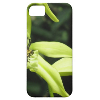 Exotic Orchids iPhone 5/5S Case