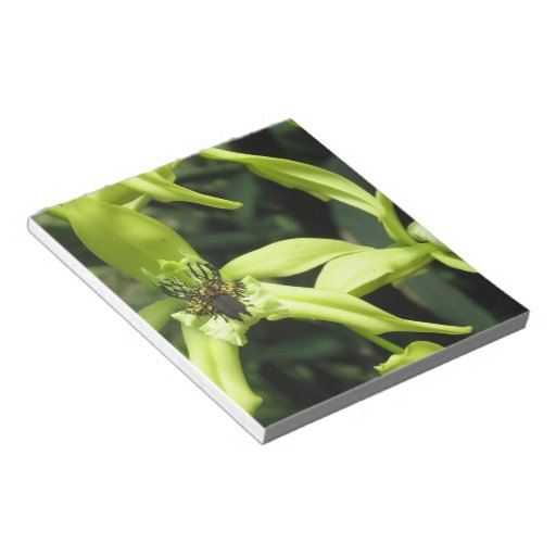 Exotic Orchids Notepad