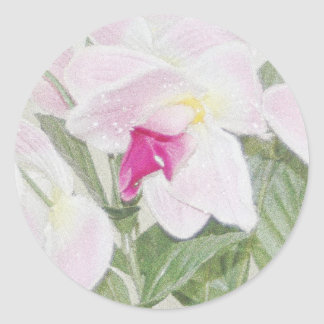 Exotic Orchids Sticker