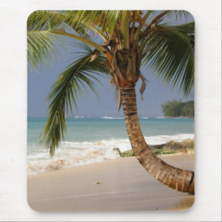 exotic palm tree on beach mouse pad