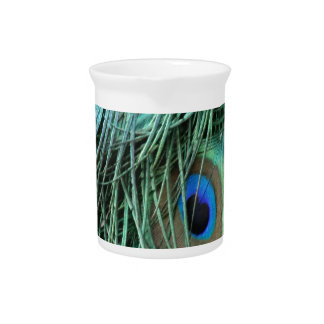 exotic peafowl feathers beverage pitcher