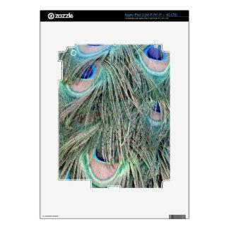 Exotic Peafowl Ruffled Feathers iPad 3 Decal