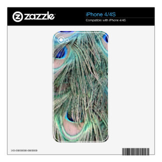 Exotic Peafowl Ruffled Feathers iPhone 4S Decal
