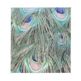 Exotic Peafowl Ruffled Feathers Notepad