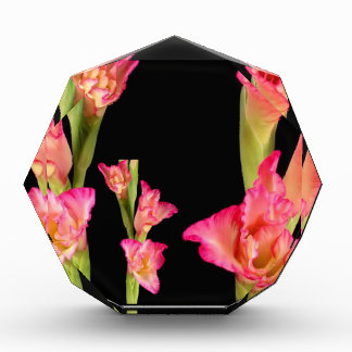 Exotic Pink Flower Bouquet Floral Elegant Gifts Acrylic Award
