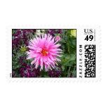 Exotic Pink Flower Stamp