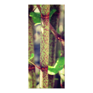 Exotic Plant 4x9.25 Paper Invitation Card