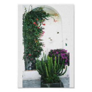 Exotic Plants Poster