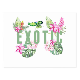 Exotic Postcard