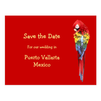 Exotic Red Destination Wedding Announcements Postcard