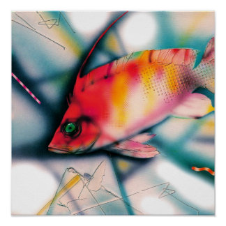 Exotic Red Fish Poster