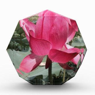 Exotic Red Flower Acrylic Award