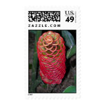 Exotic Red Flower Postage Stamps