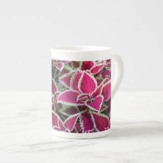 Exotic red leaf plants. Floral nature photography. Tea Cup