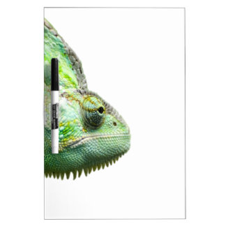 Exotic Reptile Dry-Erase Board
