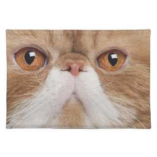 Exotic Shorthair (2,5 years old) Cloth Placemat
