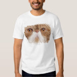 Exotic Shorthair (2,5 years old) T-Shirt