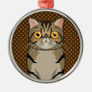 Exotic Shorthair Cat Gifts On Zazzle