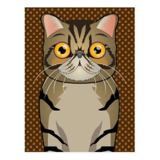 Exotic Shorthair Cat Cartoon Paws Postcard