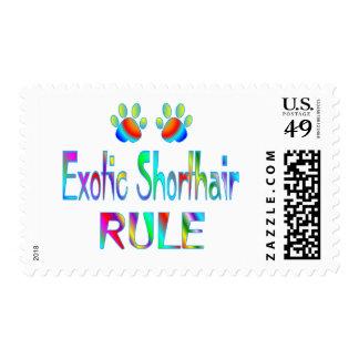 Exotic Shorthair Rule Postage Stamp